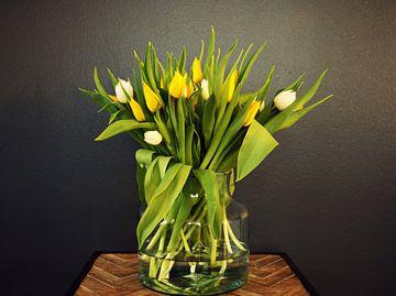 Junger Frühlingsstrauss mit gelben und weissen Tulpen in der Knospe