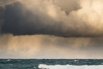 De storm van Hetwie van der Putten