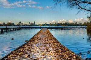 Steiger met herfstbladeren van