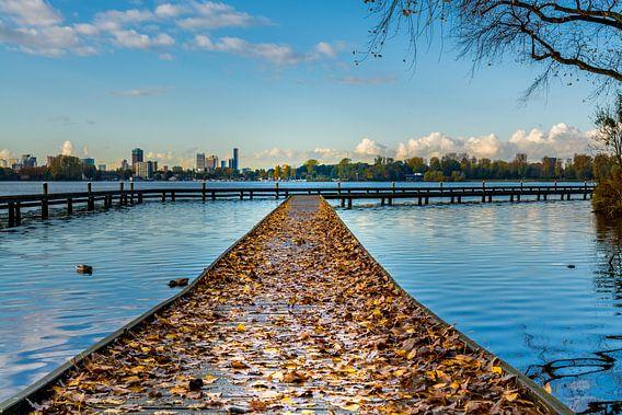 Steiger met herfstbladeren