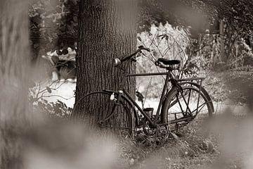 Altes Fahrrad von Erwin Heuver