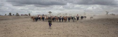 Masai Herd von BL Photography