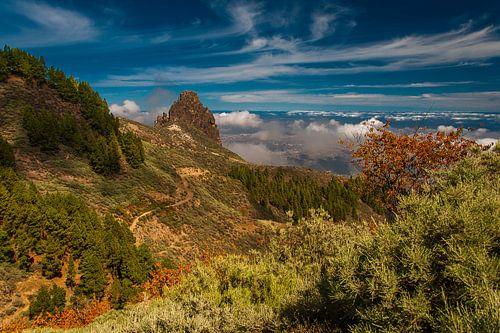 Bergen op Gran Canaria van