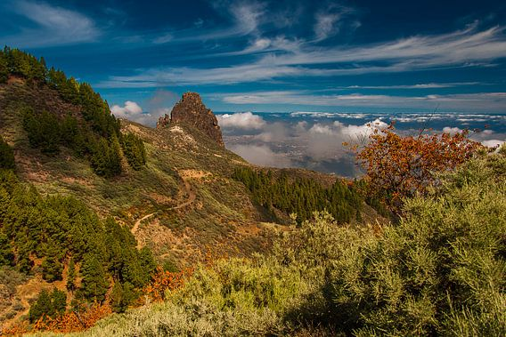 Bergen op Gran Canaria van arjan doornbos