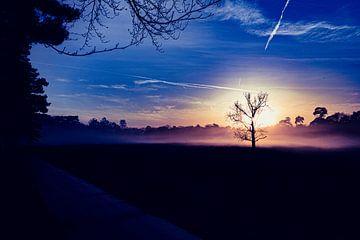 Zonsondergang op de heide van TZPhotography
