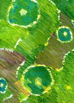 Blumen Abstraktion von Claudia Gründler