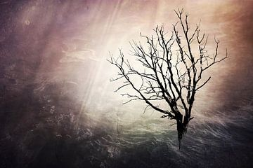 fantasy tree van Yvonne Blokland