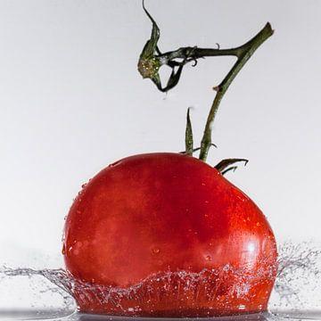 tomaat te water van