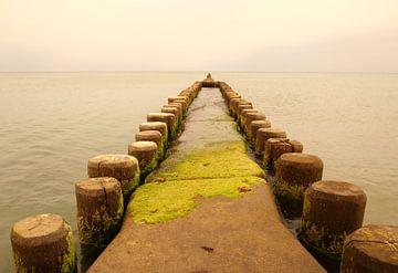 Der Weg ins Meer von Heike Hultsch