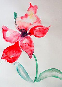 magic flower van M.A. Ziehr
