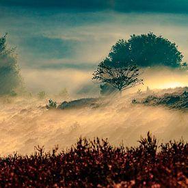 Zee van Nevel van Peter van Eijk