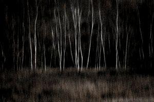 Dark wood van