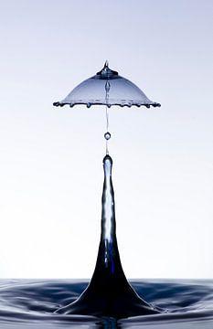 Zwarte druppel in een lampenkap vorm1 van Focco van Eek