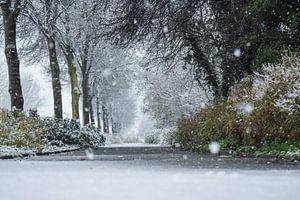 Fairytail winter von Yarik Flik