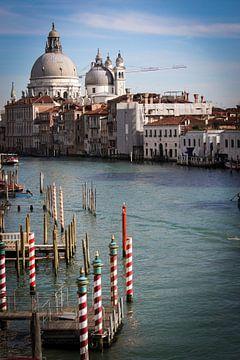 Venice van Karina Alvarenga