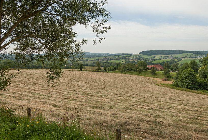 Omgeving Cottessen in Zuid-Limburg van John Kreukniet