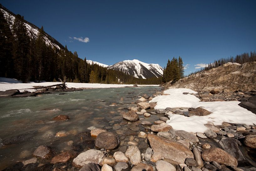Rivier in Canada vlakbij Jasper van Ramon Bovenlander