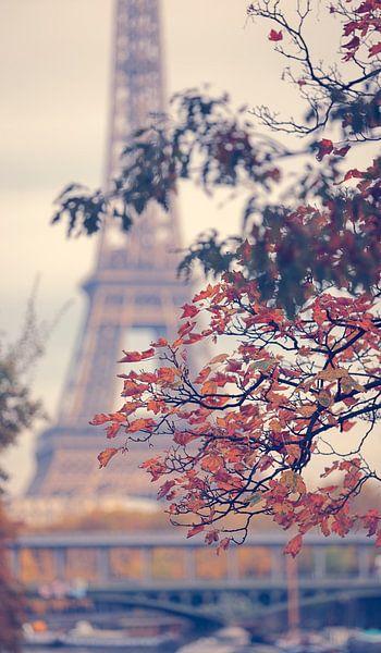 Dromerig  Parijs Frankrijk van Rob van der Teen