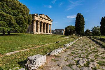 Ancient Paestum van Remko Bochem