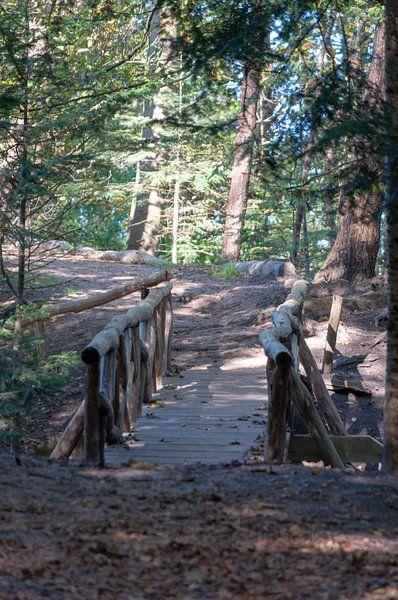 Waldweg Brücke. von Anjo ten Kate