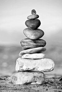 Balance van