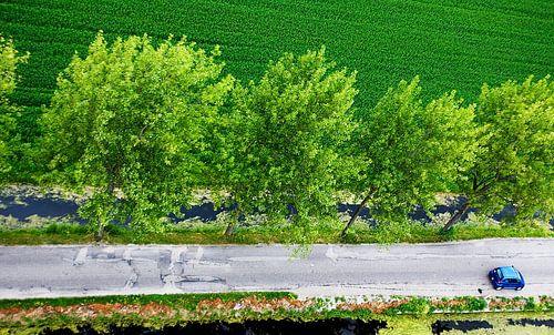 Noord-Hollands landschap vanuit de lucht