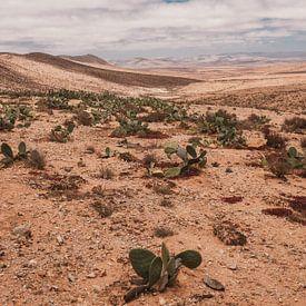 Marokkaans landschap 2 van Andy Troy