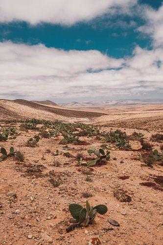 Marokkaans landschap 2 van