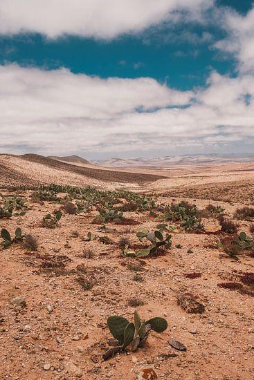 Marokkaans landschap 2