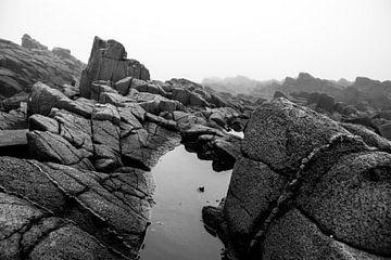Nebel, Briers Island, Nova Scotia von M. Cornu