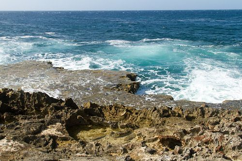 Curacao, ruige kust no. 7