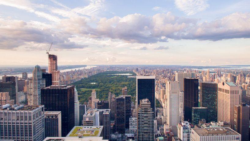 New York van Laura Vink