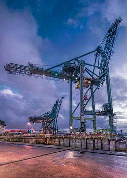 Twilight scène met containerkraan tegen dramatische lucht, Antwerpen van Tony Vingerhoets