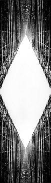 Geometrische zwart-witte abstracte vorm van Goud Vis