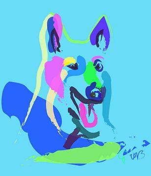 Hond Blauw van Go van Kampen