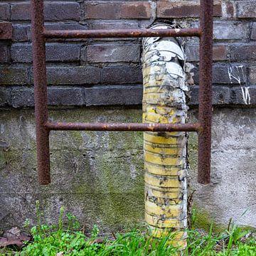 Urbex Detail - Abflussrohr mit rostiger Leiter von Photo Henk van Dijk