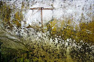 Muur begroeid met mos