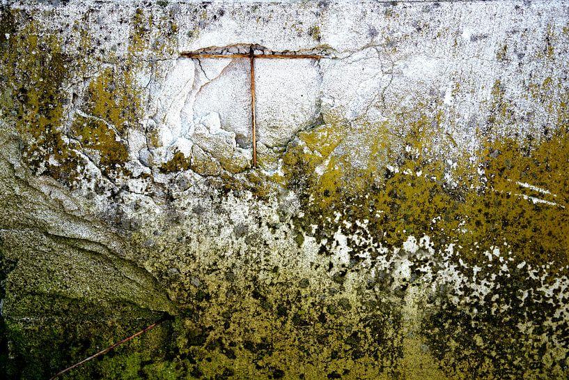 Muur begroeid met mos van Alice Berkien-van Mil