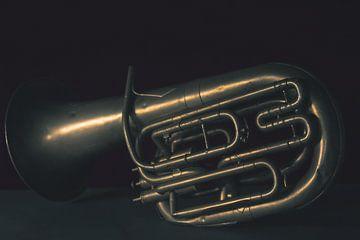 Le groupe, Tuba sur met Jessica / Fotostudio Drachten