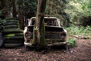 Lost in the Woods van Marius Mergelsberg