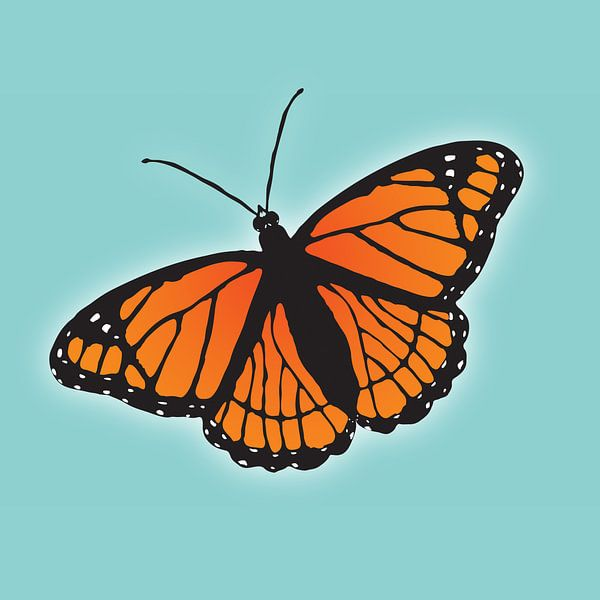 Oranje vlinder van Bianca Wisseloo