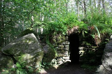 Verlassene Brücke im Wald von Floortje Mink