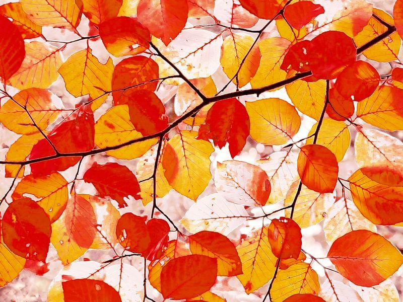 Kunstherbst in Orange (Künstlerischer Herbst in Orange) von Caroline Lichthart