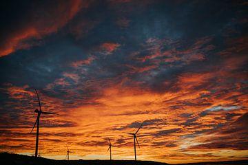 Sunrise at tweede maasvlakte van ilja van rijswijk