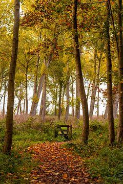 Het hekje naar het bos van Annika Westgeest Photography