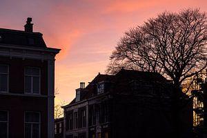 Avondrood in de Archipelbuurt Den Haag