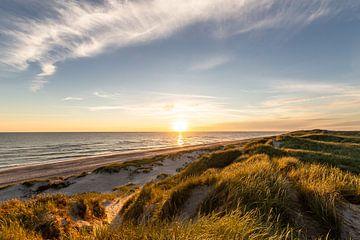 Abends in den Dünen an der Nordsee von Matthias Nolde