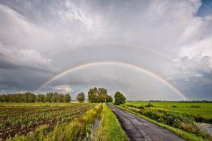 Regenboog over de polder.