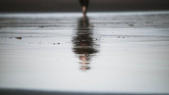 Reflectie op het strand