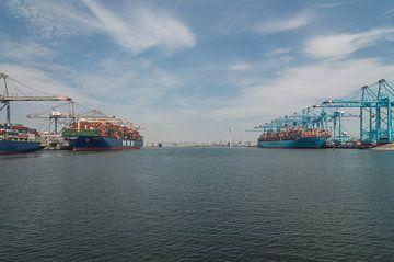 Twee grote containerschepen in de Rotterdamse haven